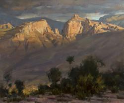 Mitch Baird - Santa Catalinas