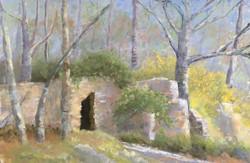 Susan Whiteman - Old Wall, New Spring