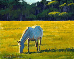 Janet Broussard - Afternoon Grazing