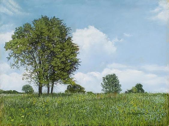 Marlene Wiedenbaum - Greenport Summer Trees