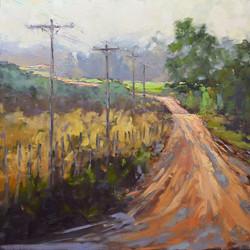 Dottie T. Leatherwood - Just a Little Dip in the Road