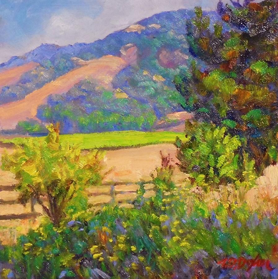 Timothy David Dixon - Backyard View