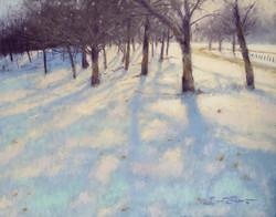 Brent Seevers - Winter's Blanket