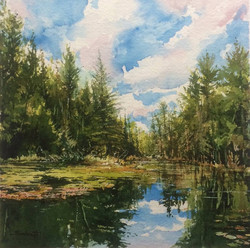 Anthony Saldutto - Lillies (Bobcaygeon Ontario)
