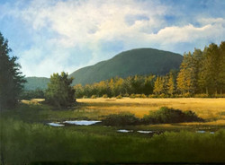 Ron Brown - Late Afternoon Light