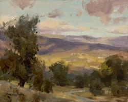 Mitch Baird - Sonoma Valley