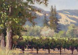 Clark Mitchell - Sonoma Summer Scene (plein air)