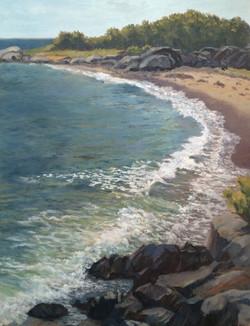 Dianna Anderson - Sea Beach