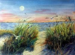 Liz McGee - Moon Beach