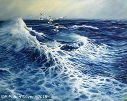 Eileen Patten Oliver - The Deep Blue Sea