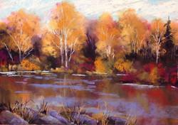 Bonnie Zahn Griffith - Reflections