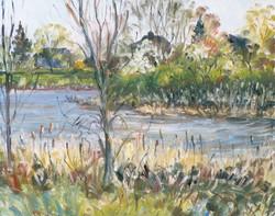 Douglas Howe - Capisic Pond #1