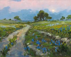 J.R. Cook - Moonrise Over Bluebonnets