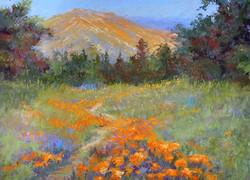 Jacquelyn Blue - Santa Barbara Afternoon