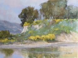 Kris Buck - Springtime at Goleta Beach (pastel)