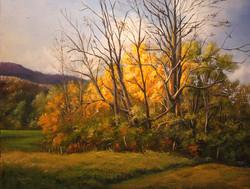 J. Richards, Jr. - Vermont Treasure