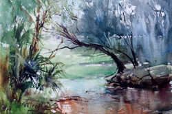 Christa Friedl - Where the Sun Comes Through (watercolor)