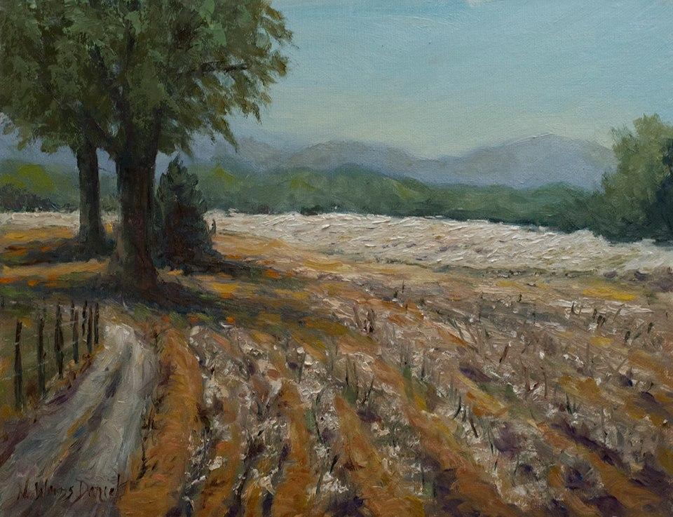 Nancy Woods Daniel - The Land of Cotton