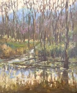 Dottie T. Leatherwood - Dreaming of Sky