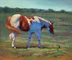 Jude Tolar - Pasture Pals