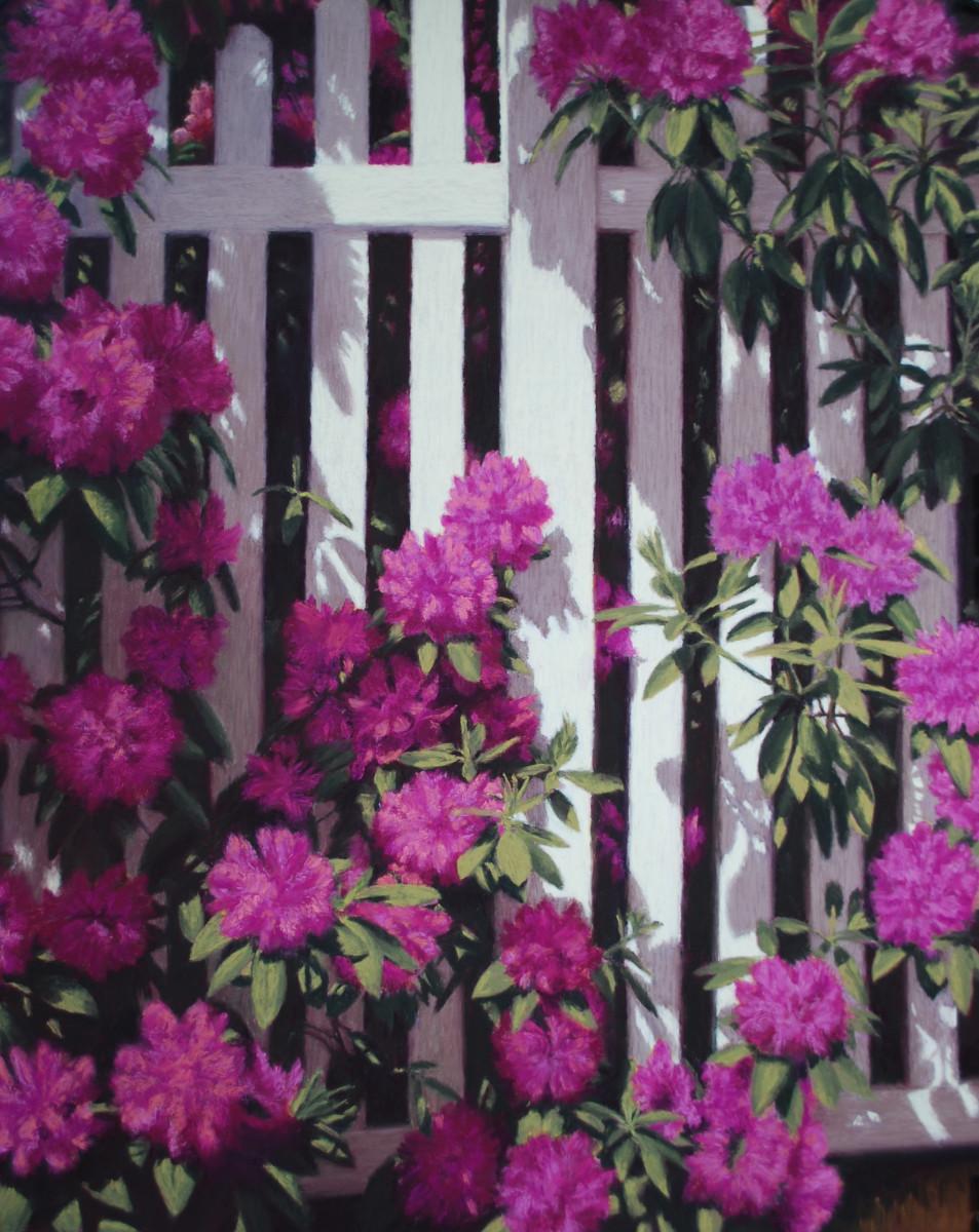 Lisa Cunningham - On the Fence