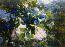 Gelena Pavlenko - The White Bird