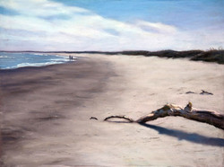 Christopher Reid - Masonboro Driftwood