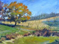 Erin Gill - Autumn Fields
