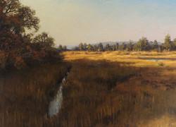 Joseph McGurl - Afternoon Light in the Marsh (plein air)