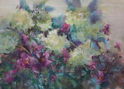 Barbara Reich - Blooming Beauties