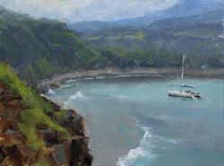 Dave A. Santillanes - Honolua Bay.jpg