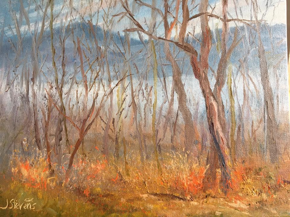 Julia Norton Stevens - Eagle Mountain & Lake Chatuge