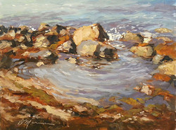 Diane Mannion - Tide Pool