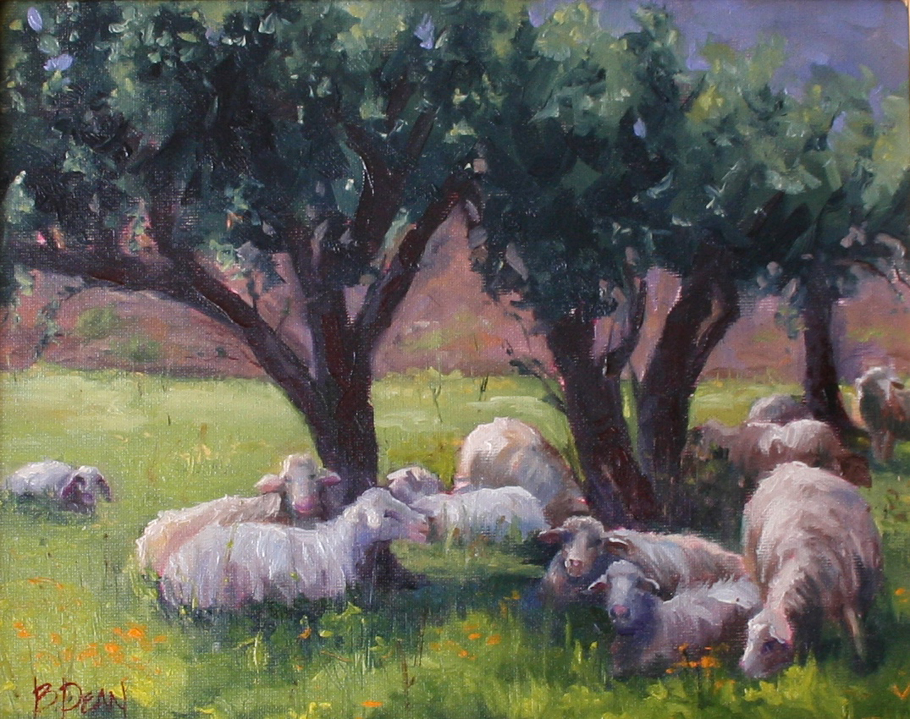 Beth Dean - Sheep in the Olive Grove