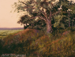 Janet Broussard - Hill Country Twilight
