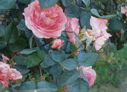 Gelena Pavlenko - Rose Garden