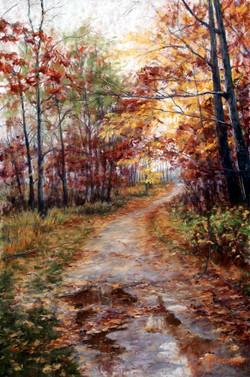Mary M Giacomini - A Walk to Remember