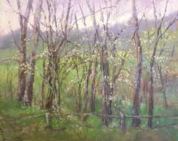 Dottie T. Leatherwood - Lavender Morning