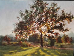 Ina Millman - Late Afternoon Tree