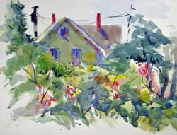 David Finnell - Maine Garden