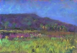 Suzanne Leslie - Landscape of Giverny
