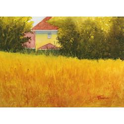 Zan Barrage - September Sun