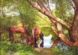 Tatyana Chernikh - Horses