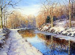 Michael Salt - Gothersley in Snow