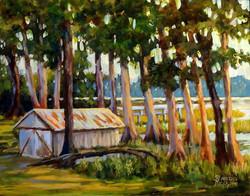 Sharon Repple - Lakeside Cypress