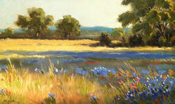 J.R. Cook - Bluebonnets Late Afternoon