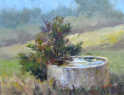 Nellie Gill - Water Trough