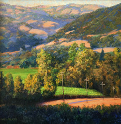 Nancy Paris Pruden - Sonoma Sunset