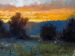 Jason Sacran - Morning Light.jpg