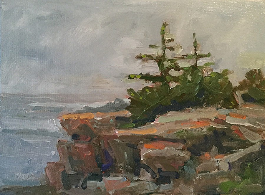 Barb Walker - Maine Coast